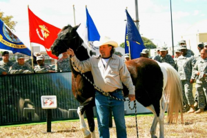 Equine Adventure Program for veterans