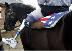 Veteran's Multi-Purpose Center - Horses for Vets