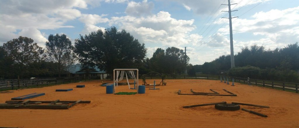 Obstacle course for Equine Assisted Recreation Therapy for Veterans. Family and children